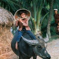 Huỳnh Phi Toàn